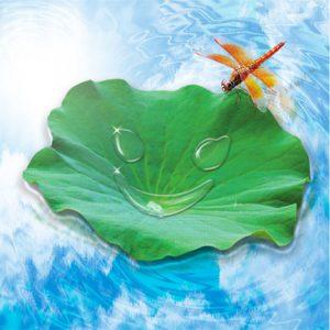 Happy Green Leaf