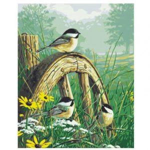 Sparrow's Morning Prayer