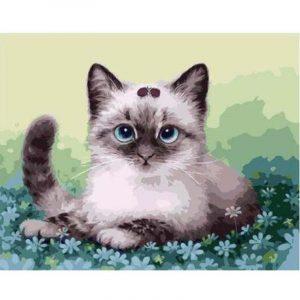 The Posing Cat