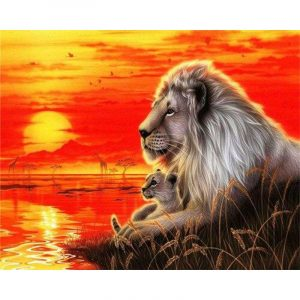 Lion Looking at Sunset