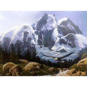 The Mountain Bear