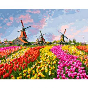 Colorful Flower Fields and Wind Mill