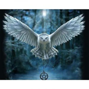 The White Owl