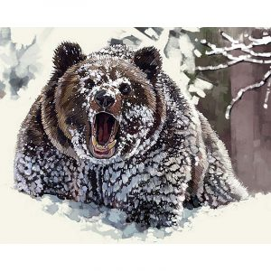 Angry Bear in the Snow