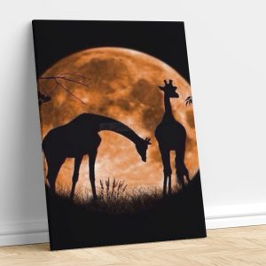 Romantic Giraffe in Moon Light