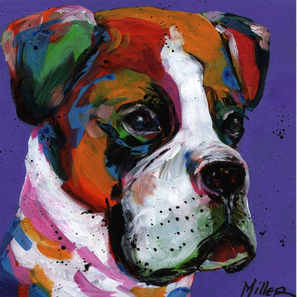 Abstract Boxer Dog